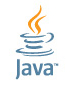 Polymorphism in java with Example Program